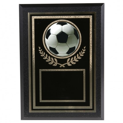 Authentic Soccer Team Award Plaques