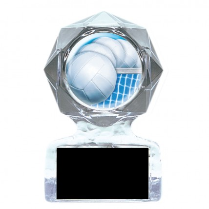Acrylic Action Volleyball Serve Trophy