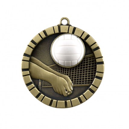 3-D Gold Volleyball Medals