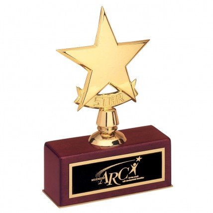 Engraved Small Gold Star Awards