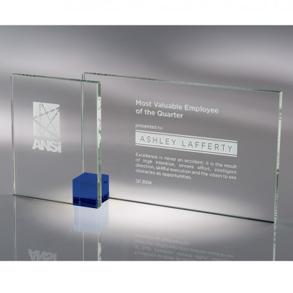 Double Pane Glass Corporate Award