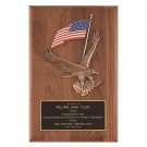 Colorful Flag and Eagle Plaque
